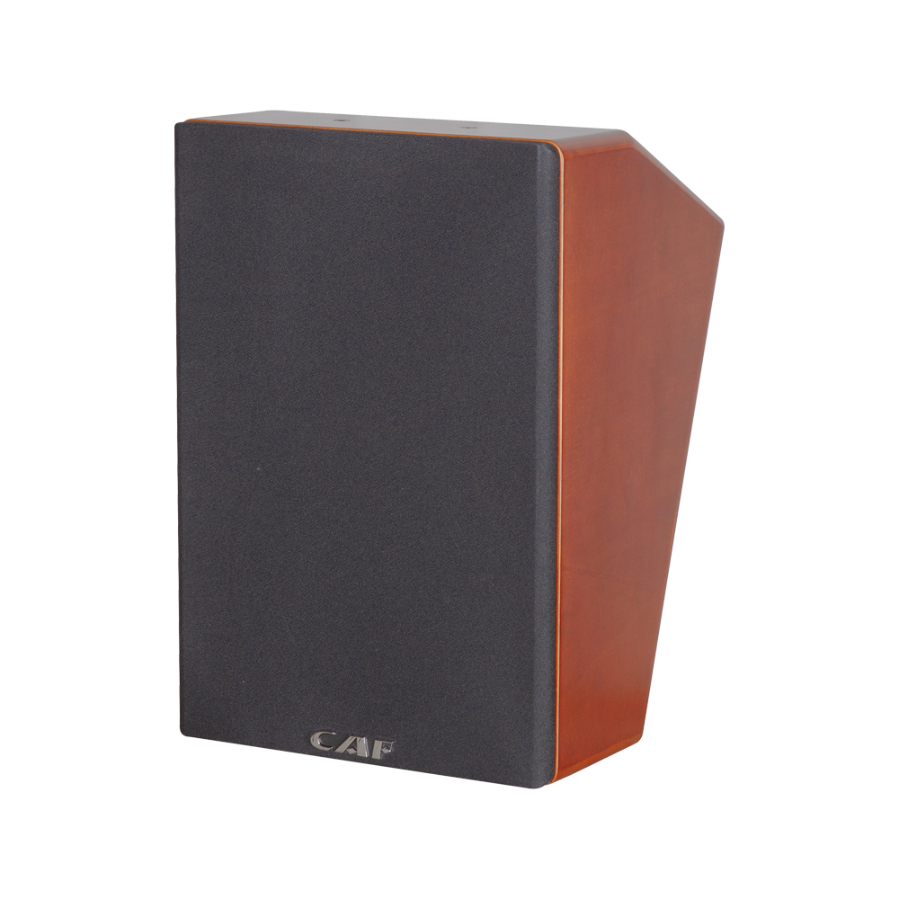 China hot-sale product SK-10M Main speaker